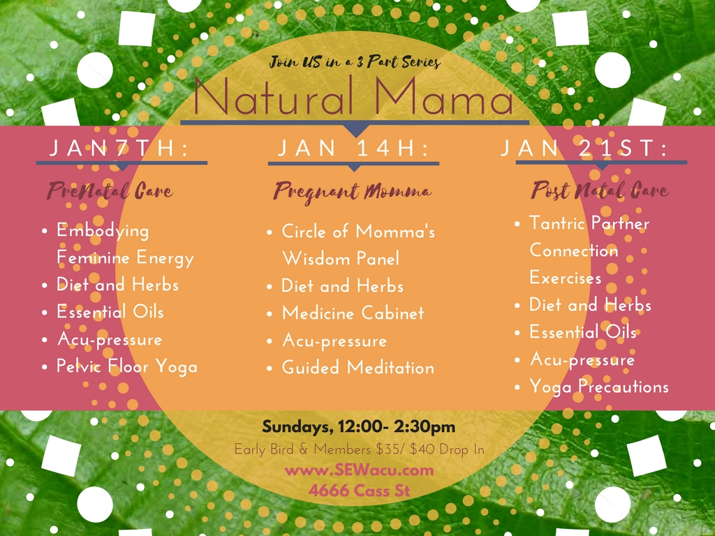 Natural Momma Series