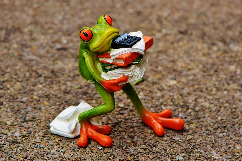 stress frog